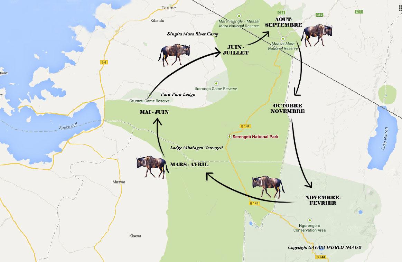 safari en Tanzanie. La grande migration des gnous